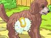 Пудель-щеночек