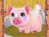Уход за свинкой